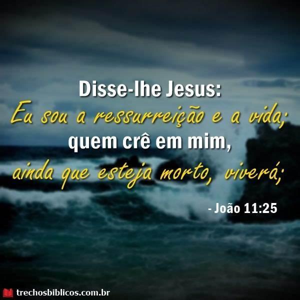 João 11:25 3