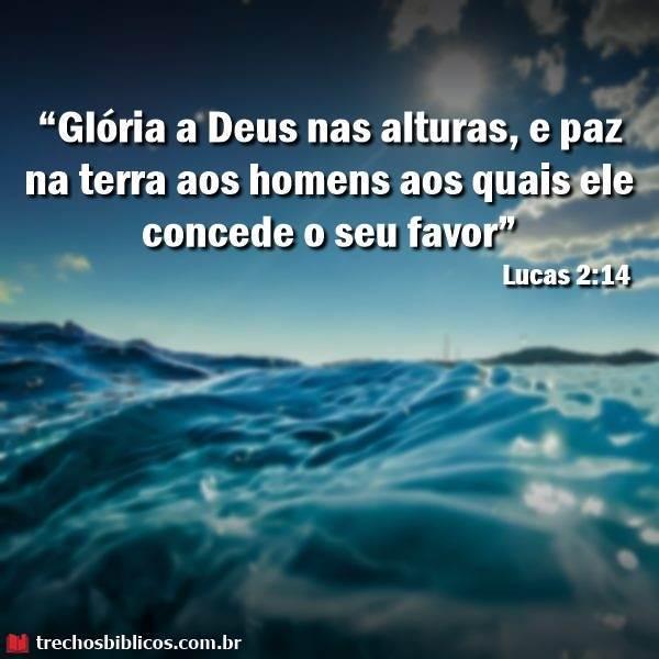 Lucas 2:14 1