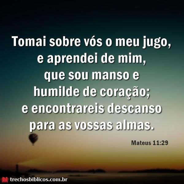 Mateus 11:29 16