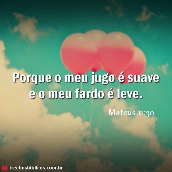 Mateus 11:30 6