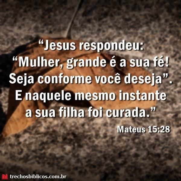Mateus 15:28 34