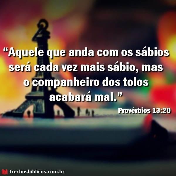Provérbios 13:20 21