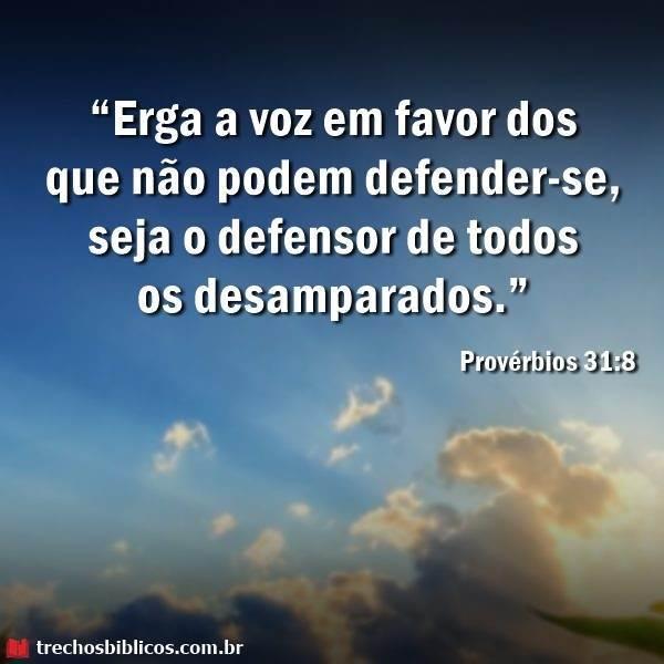 Provérbios 31-8