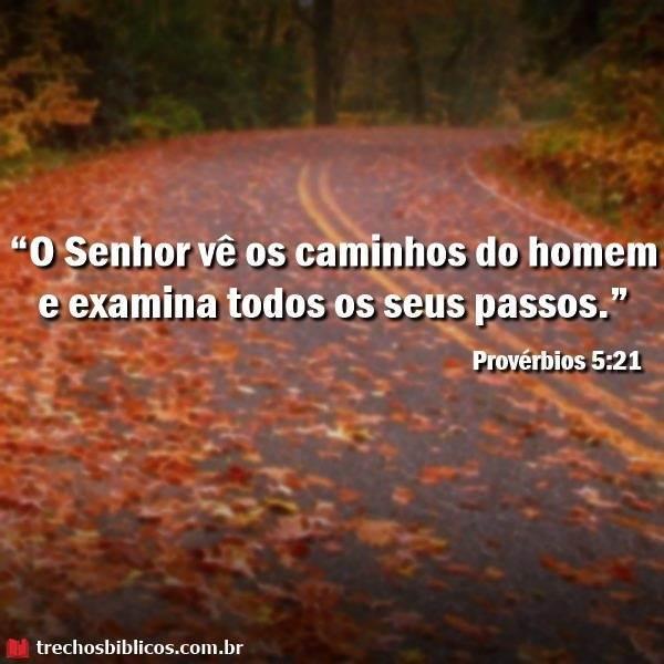 Provérbios 5:21 19
