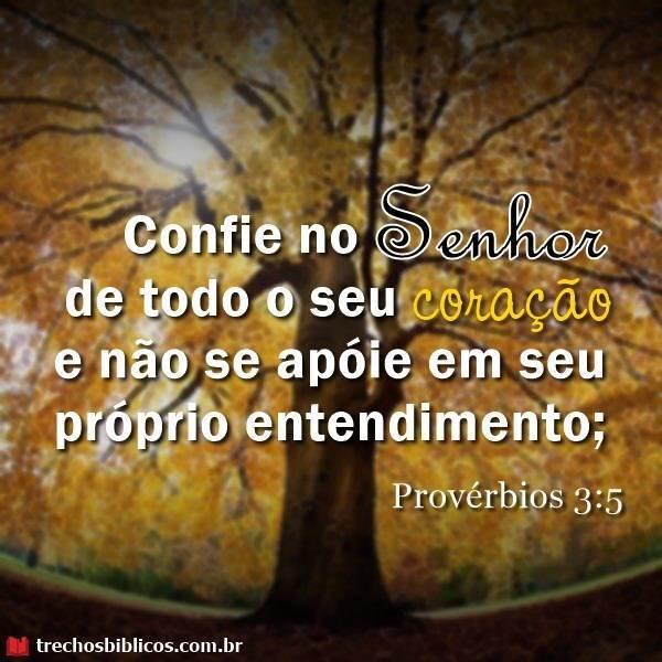 Provérbios 3:5 11
