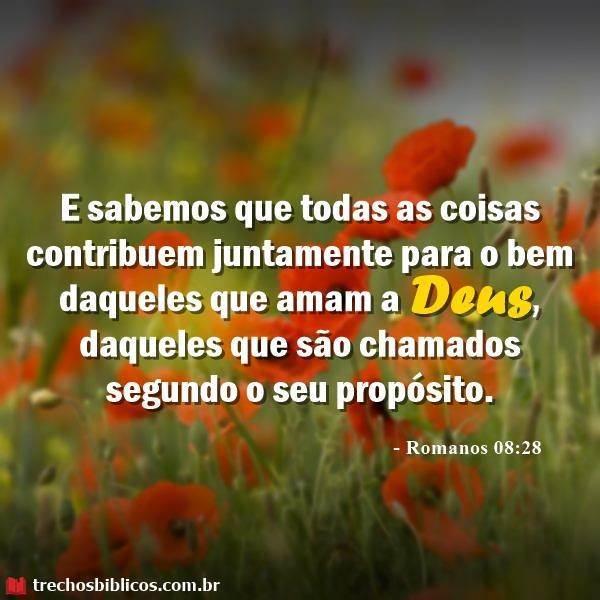 Romanos 8:28 17