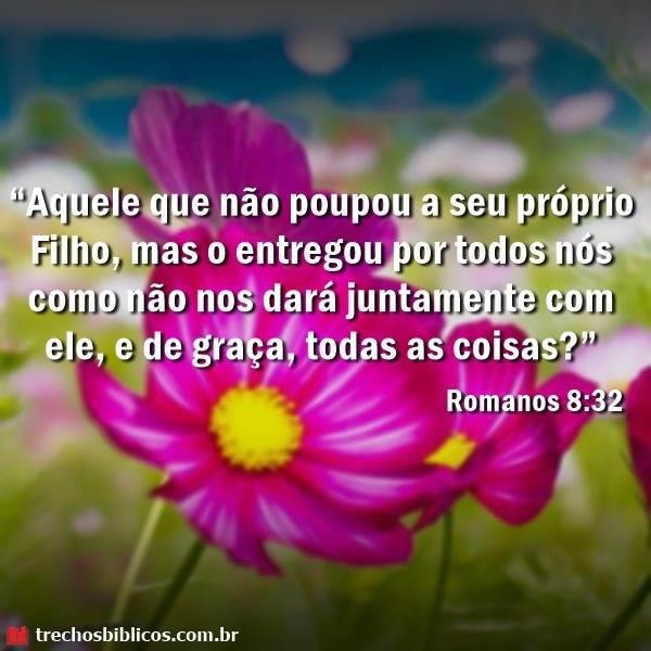 Romanos 8-32