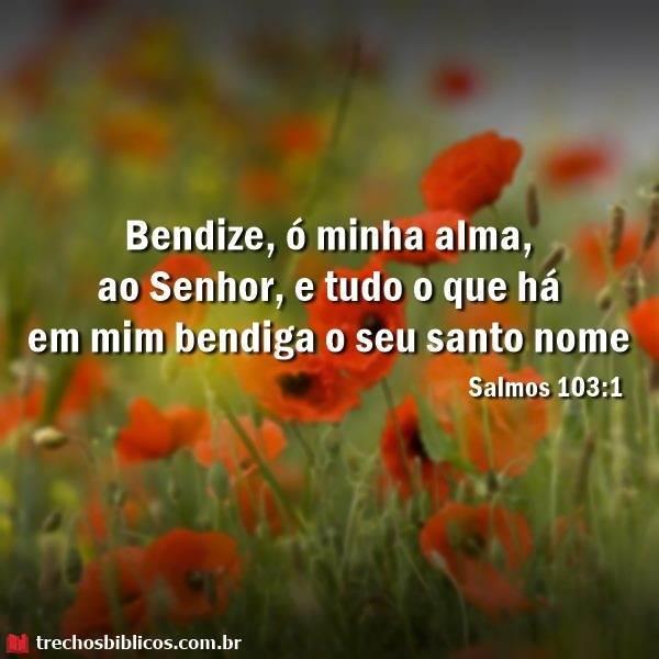 Salmos 103:1 3