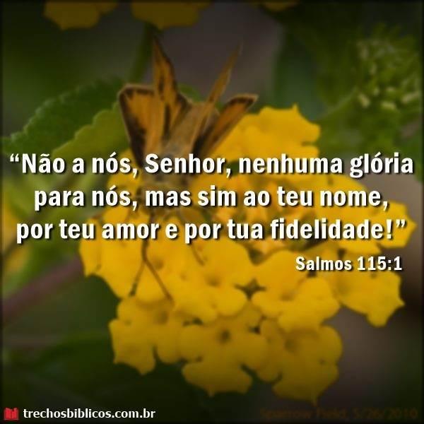 Salmos 115:1 12