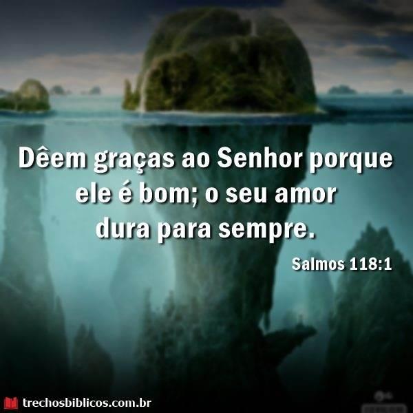 Salmos 118:1 9