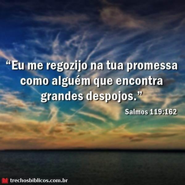 Salmos 119-162