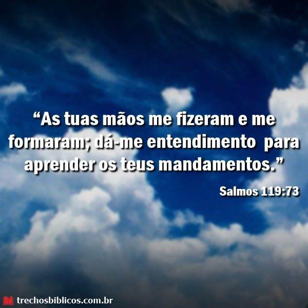 Salmos 119:73 16