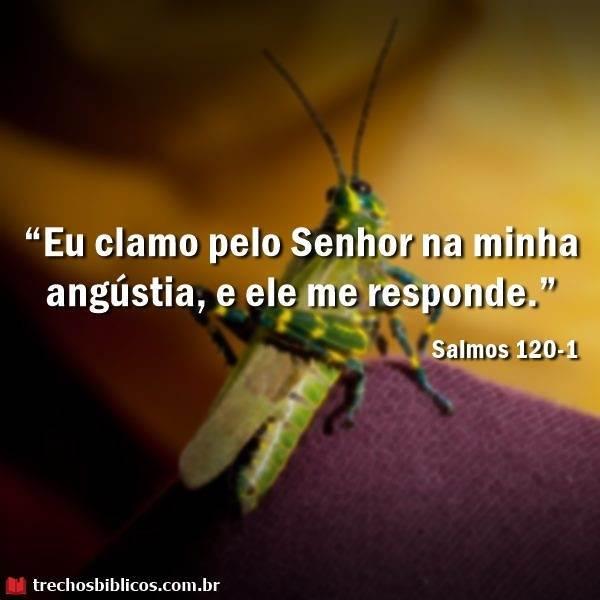 Salmos 120:1 6
