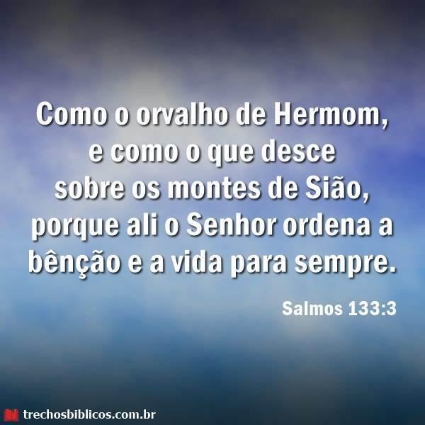 Salmos 133:3 17