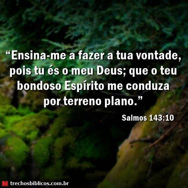Salmos 143:10 13