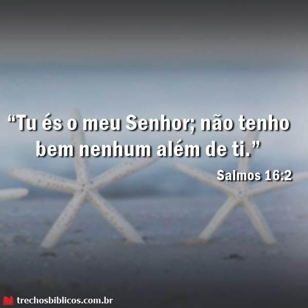 Salmos 16:2 10