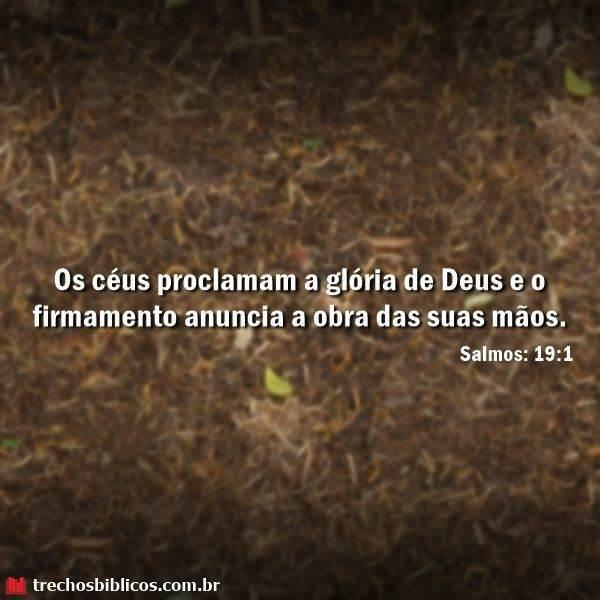 Salmos 19:1 16