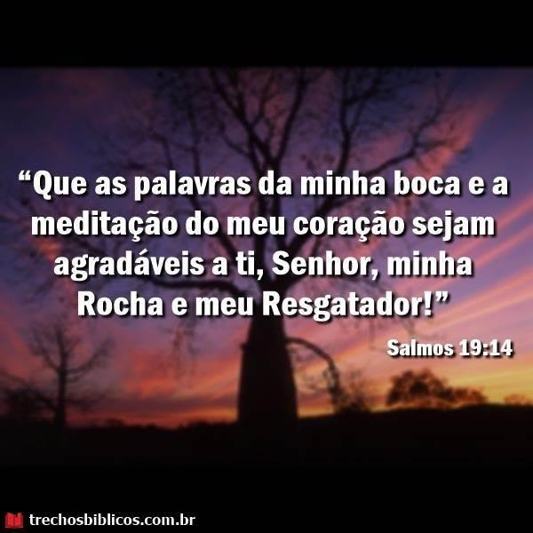 Salmos 19:14 8