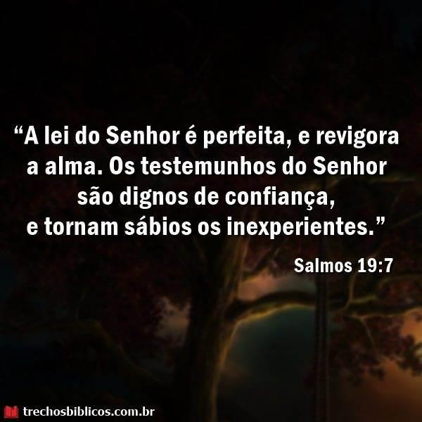 Salmos 19:7 8