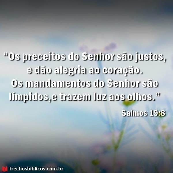 Salmos 19:8 9
