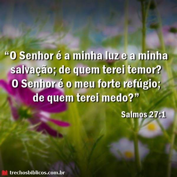 Salmos 27:1 18
