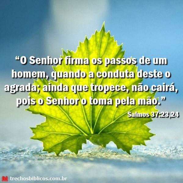 Salmos 37:23-24 5