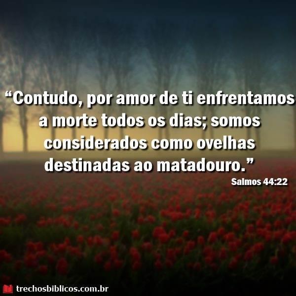 Salmos 44:22 9