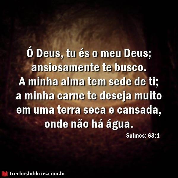 Salmos 63:1 6