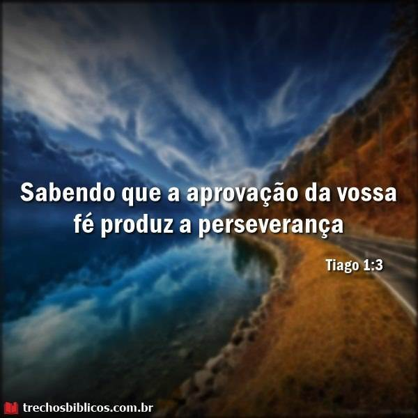 Tiago 1:3 19
