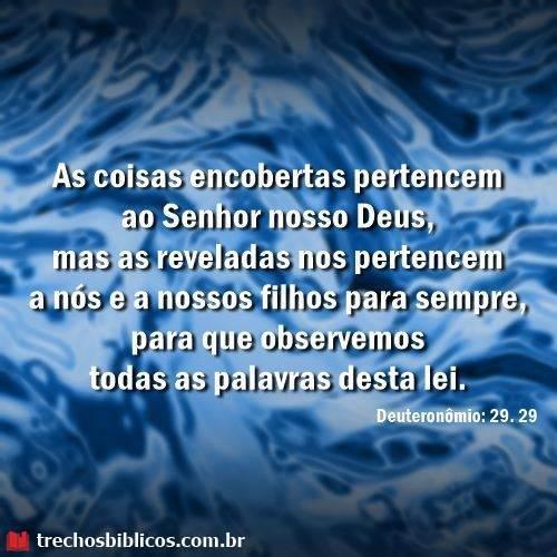Deuteronômio 29:29 5