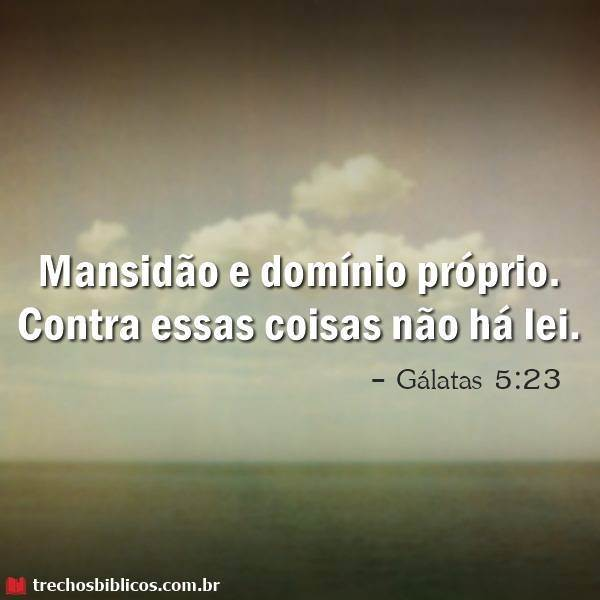Gálatas 5:23 10