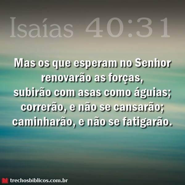 Isaías 40:31 6