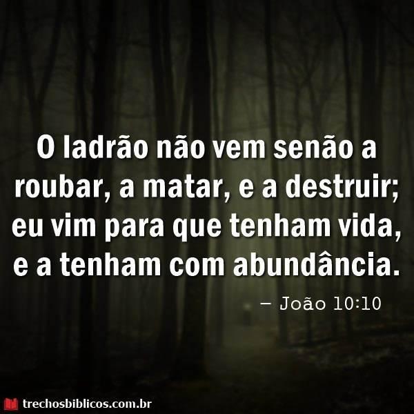 João 10:10 16