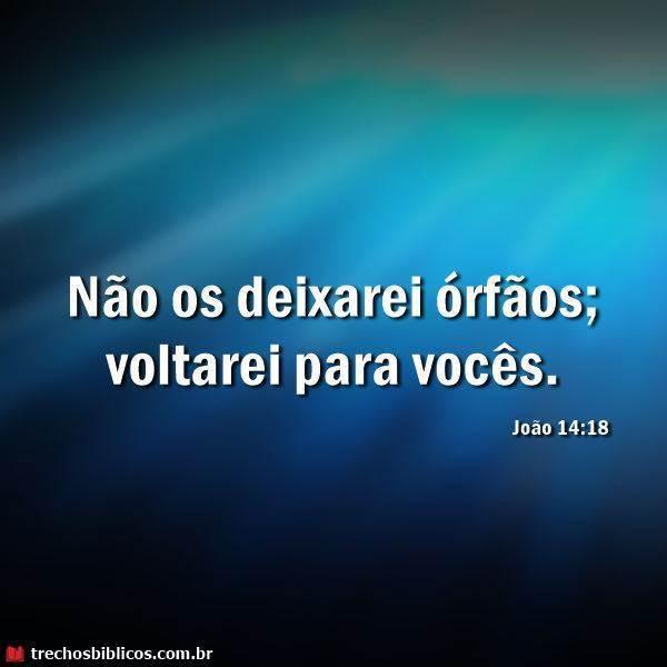 João 14:18 10