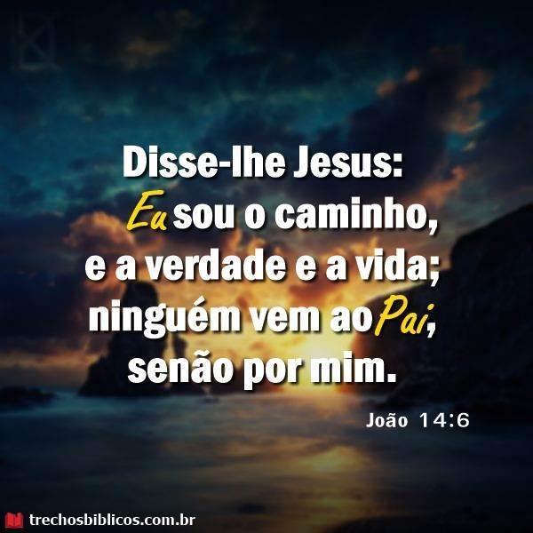 João 14:6 17