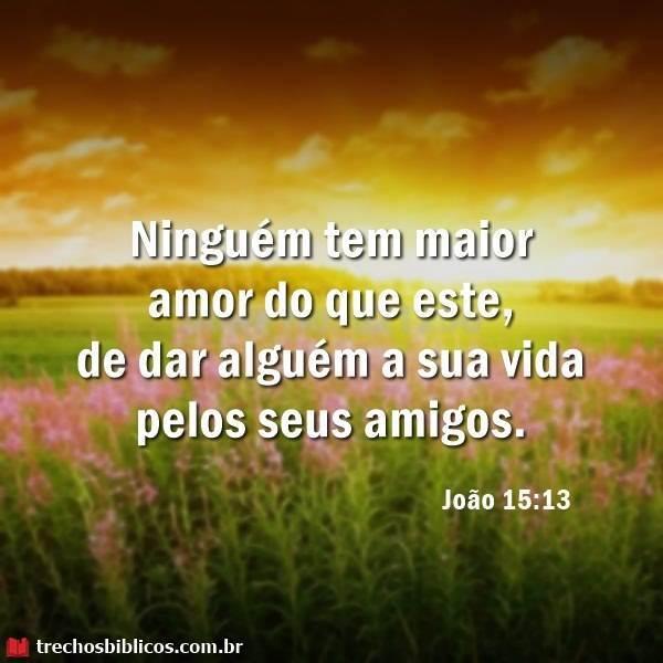 João 15:13 3