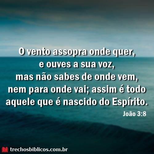 João 3:8 7