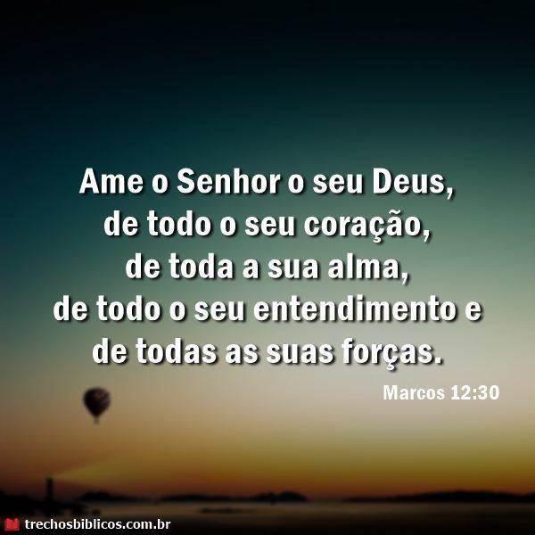 Marcos 12:30 8