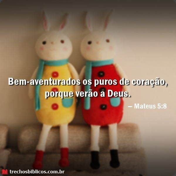 Mateus 5:8 10