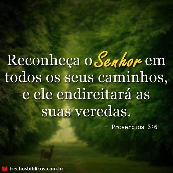Provérbios 3:6 4