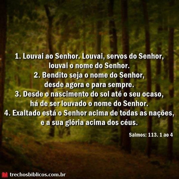 Salmos 113:1-4 11