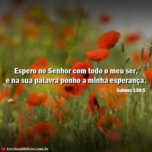 Salmo 130:5 24