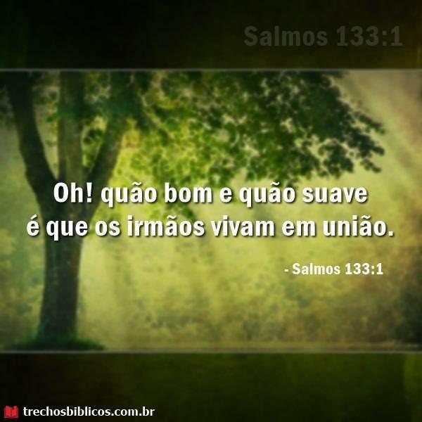 Salmos 133:1 8
