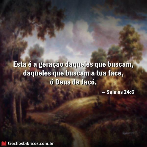 Salmos 24:6 8