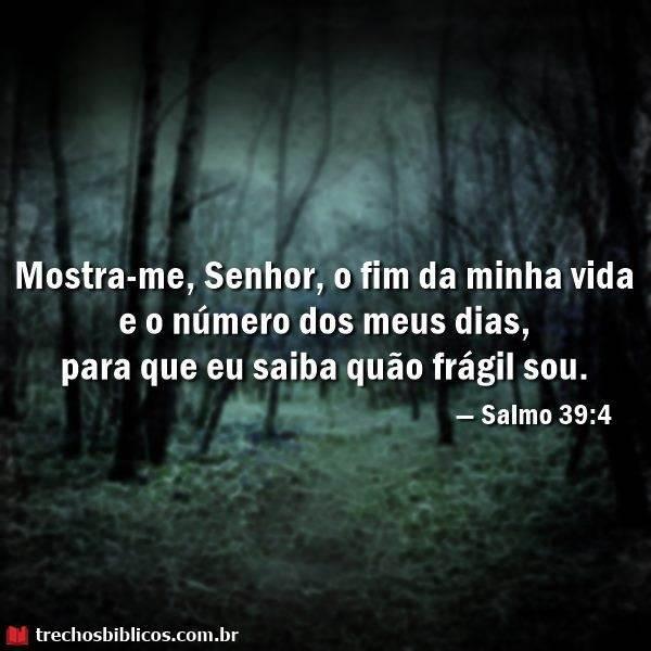 Salmos 39:4 5