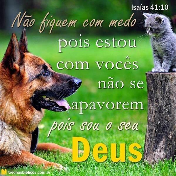 Isaías 41:10 10