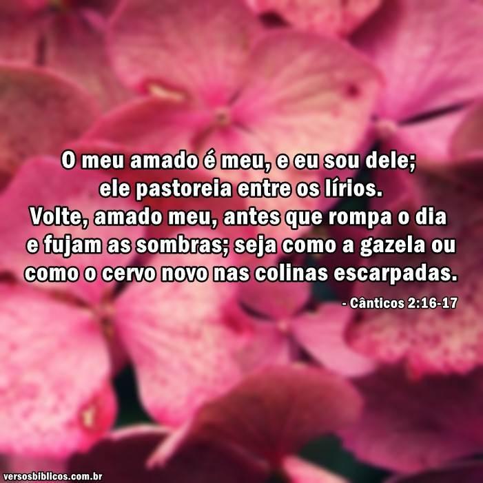 Cânticos 2:16-17 7