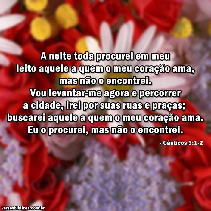 Cânticos 3:1-2 6