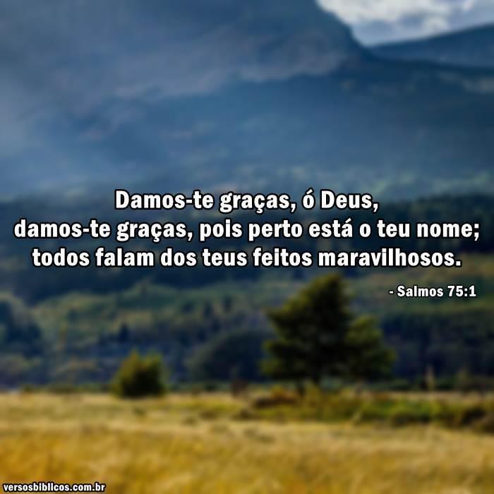 Fabuloso Versículos de Agradecimento – Versículos GC83
