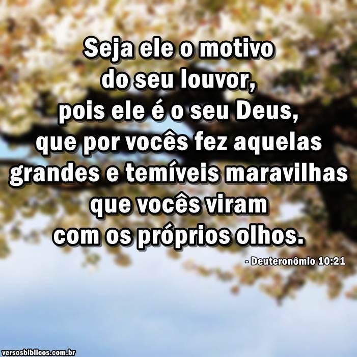 Deuteronômio 10:21 9